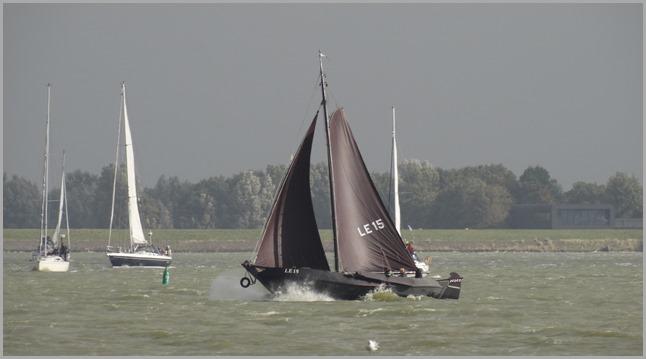 DSC04316