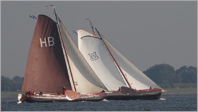 Friese hoek race 04-10-2014 (2/6)