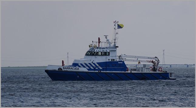 DSC05581